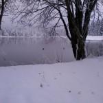Winterlandschaft-Allgäu