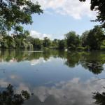 Privatgrundstücke-Schloßsee-Bad-Waldsee