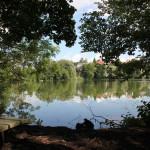 Schloßsee-Bad-Waldsee-Bank-Blick