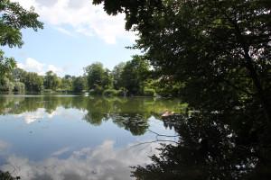 Ufergrundstücke-Schloßsee-Bad-Waldsee