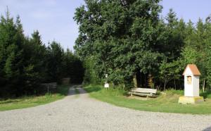 Waldwege zur Wallfahrtskapelle St. Sebastian