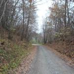 Abschnitt Archäologischer Wanderweg