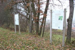 Archäologischer Wanderweg Station 7 & 8