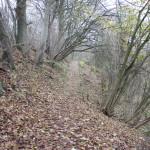Archäologischer Wanderweg Ennetacher Berg