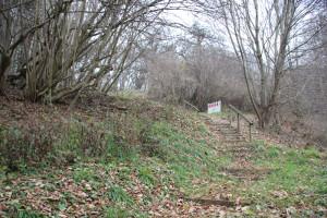Bergauf Ennetacher Berg Archäologischer Wanderweg