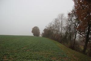 Feldrand -Archäologischer Wanderweg Ennetacher Berg
