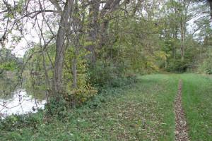 Pfad ins Naturschutzgebiet Lindenweiher