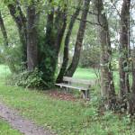 Sitzbank am Lindenweiher