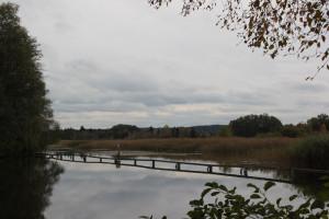 Lindenweiher Oberschwaben
