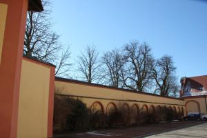 07-Außenwand-Schloss-Altshausen