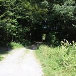 Weg zum Brunnenholzried Bad Waldsee
