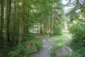 Weg zum Hofgut Elchenreute