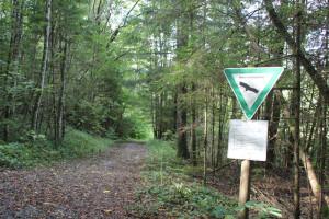 Naturschutzgebiet Altdorfer Wald