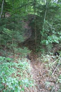 Mountainbike Strecke Altdorfer Wald