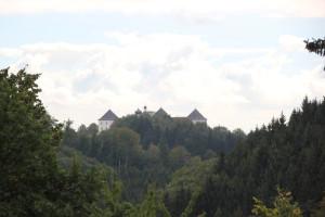 Blick auf Schloss Wolfegg