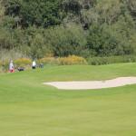 Golfer in Bad Waldsee