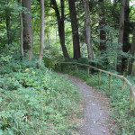 07-Wanderweg-Höll-Oberschwaben-