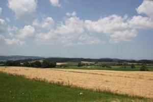 Aussicht vom Berg Danketsweiler