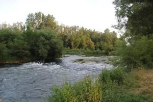 Donau Oberschwaben