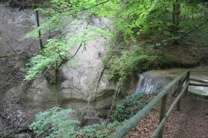 Kalkgestein beim Wasserfall Schmalegger Rinkenburger Tobel