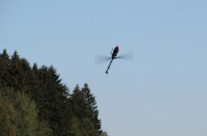 Kunstflug Modellhubschrauber