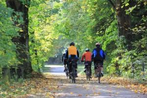 Radfahrer in Oberschwaben