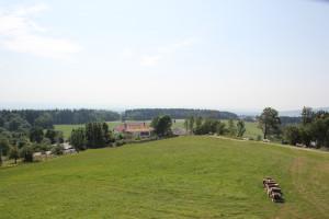 31-Bergplateau-Höchsten