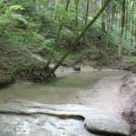 Bett-des-Buttenmühlebach-Schmalegger-Rinkenburger-Tobel