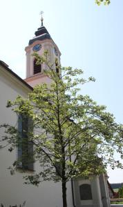 Langschiff und Turm Kißlegg Kirche
