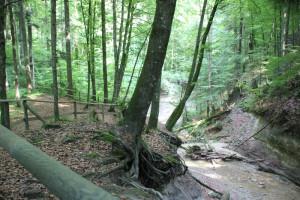 Platz-beim-Wasserfall-Buttenmühlebach