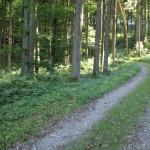07 Wanderweg durch Neu Waldsee