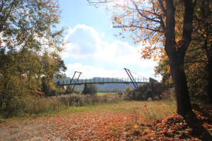 Brücke neben Ummendorfer Ried