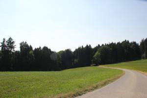 Geteerte-Straße-nach-Scharben