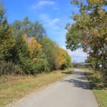 Wander und Radweg Ummendorfer Ried