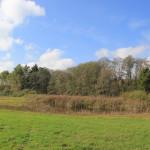 Wiesen mit Wanderweg Ummendorfer Ried