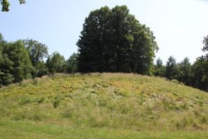 Hohmichele-Grabhügel-mit-Bäumen