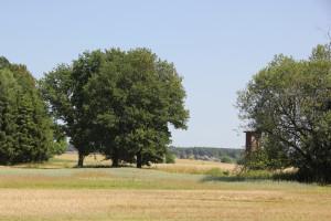 Südlicher-Rand-Vierecksschanze-Aßmannshardt