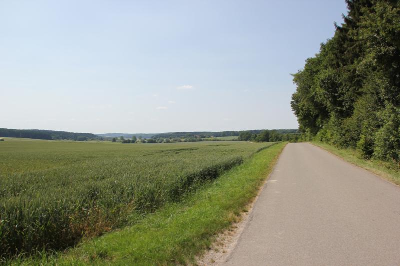 Teerweg zum Hohmichele bei Altheim