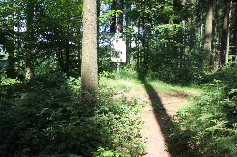 Vierecksschanze Altheim-Heiligkreuzthal Speckhau