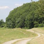 08 Feldweg Deggenhauser Tal