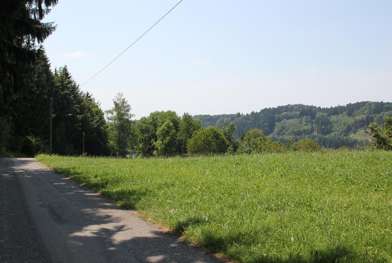 23 Geteerte Straße Deggenhauser Tal