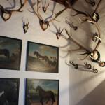 50 Jagd und Pferde Waldburg