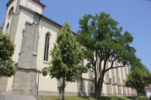 Kirchenschiff Hohentengen