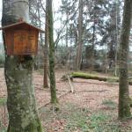 Bannwald Schreckensee