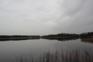 Naturschutzgebiet Schreckensee