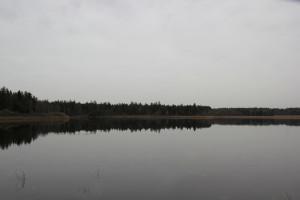 Schreckensee Naturschutzgebiet