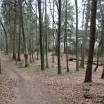 Wanderweg Naturschutzgebiet Schreckensee