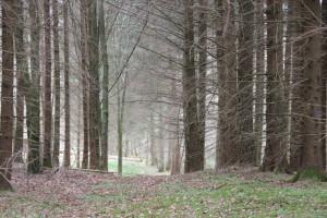 Wanderweg Schreckensee Naturschutzgebiet