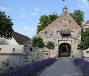 Eingang Schloss Erbach Donau