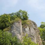 020 Felsen Donautal